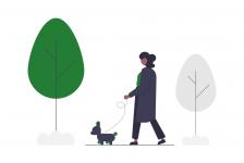 start a dog walking business
